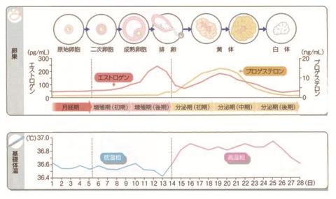 37 度 生理 前 体温