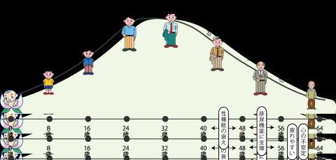 0805_男性の更年期_図表